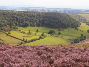 Hole-of-Horcum-5-Unique-Winter-Walks-In-The-North-York-Moors